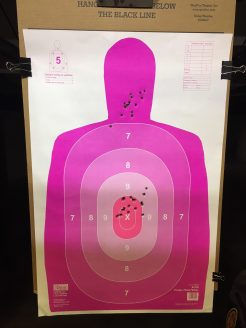 Grouping at 10 yards with all 3 G2R round types. Head shots with Ruger. Body shots with Sig.