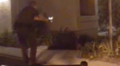 California Sheriff's deputy curb stomps suspect