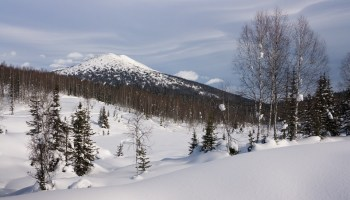Door breaks open on Russian plane, dropping millions in gold, platinum over Siberian wilderness