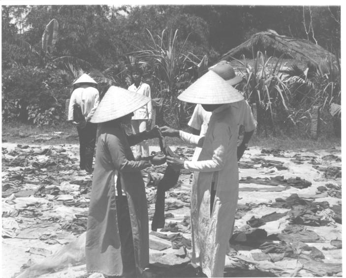 The Hue Massacre