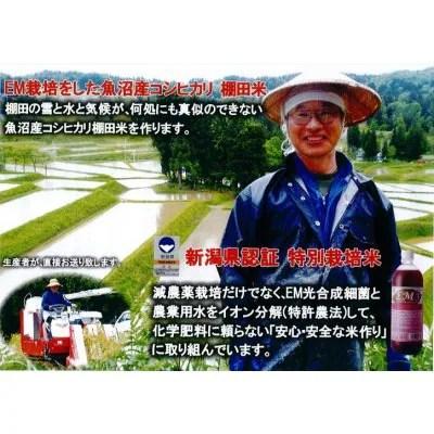 【残留農薬ゼロ】精米/10k×6回/リザーブ便/配達日フリー/魚沼産コシヒカリ/棚田米