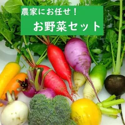 【送料込】畑より直送!旬のお野菜セット◆埼玉産◆8-10品詰め合わせ