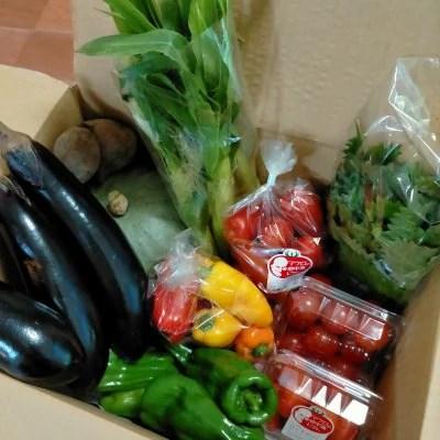 蒜山高原の旬のおまかせ野菜セットSサイズ