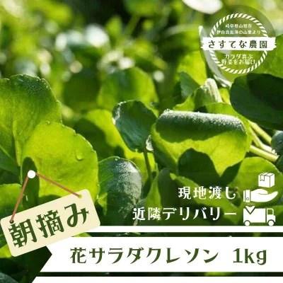 清流クレソン/1kg[さすてな農園]/朝摘み/岐阜野菜通販/岐阜クレソン