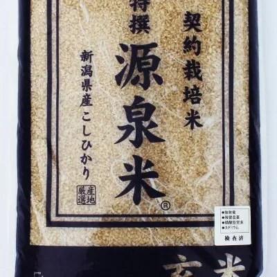 【特撰 源泉米・玄米】新潟産コシヒカリ 5kg