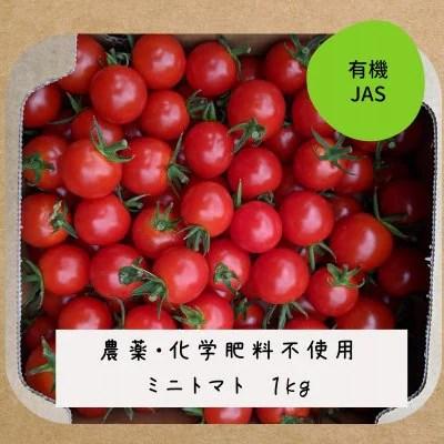 有機ミニトマト 1kg 農薬・化学肥料不使用