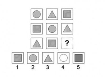 SEARCH / Naglieri Nonverbal Ability Test