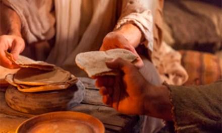 DOMINGO XVIII TIEMPO ORDINARIO: ABRAZAR LA NUEVA CONDICIÓN HUMANA