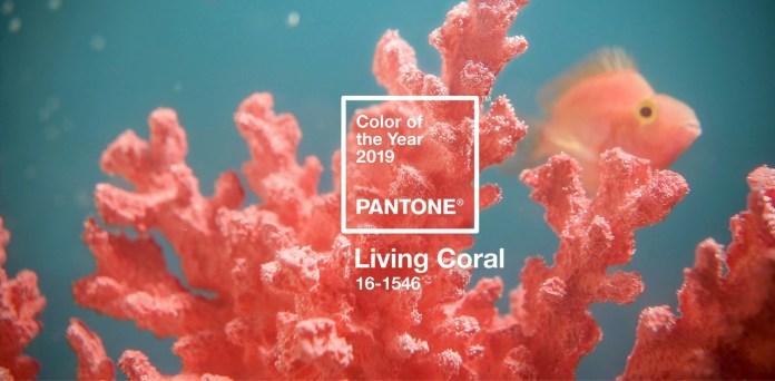 cliomakeup-colore-pantone-2019-living-coral