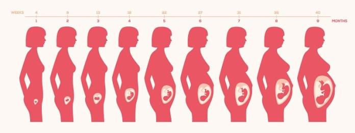 cliomakeup-miti-alimentazione-gravidanza-3-cambiamento-corpo-gravidanza