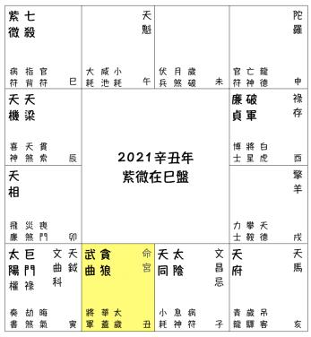 2021辛丑流年預測 - 紫微在巳盤