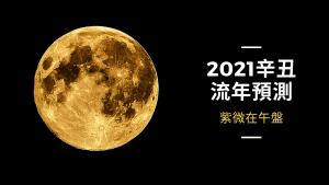 2021辛丑流年預測 - 紫微在午盤