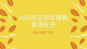 2021辛丑流年預測 – 紫微在丑