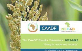 CAADP result framework