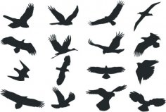 Bird Silhouette Vector dxf File