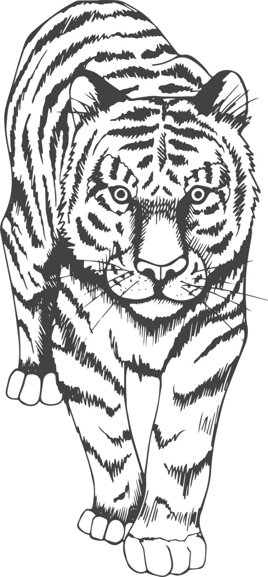 Tiger Art Print Free Vector