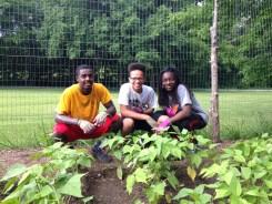Z - CNSF - Wyman - Teens Gardening