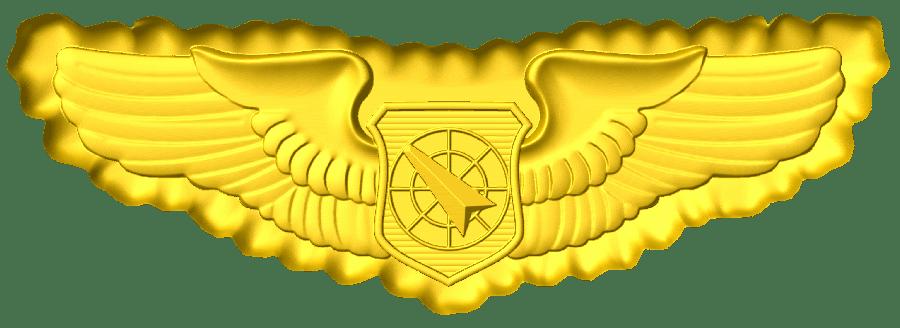 Master Parachutist Wings