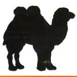 0043 Camel Side Shape (0043)