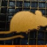 animal-shape-xx1 Mouse Shape (0014)