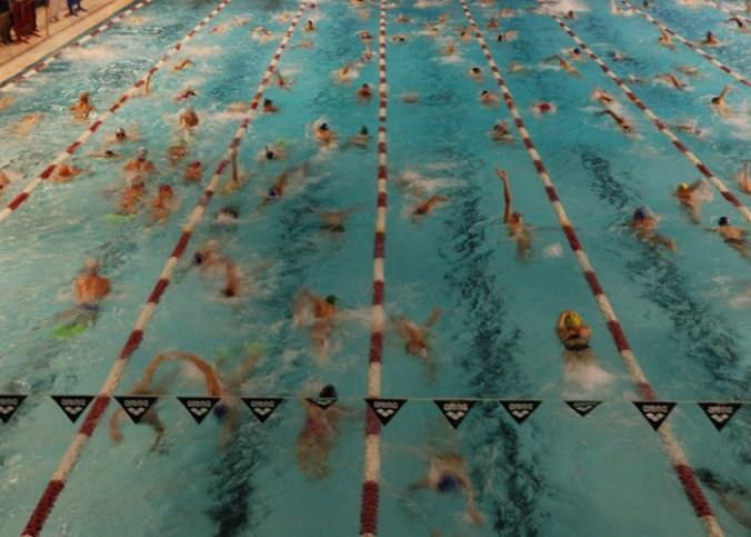 entrainement nageur cimpétition