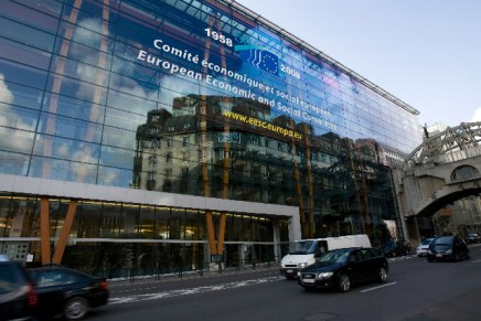CESE: Proiect privind întreprinderea socială