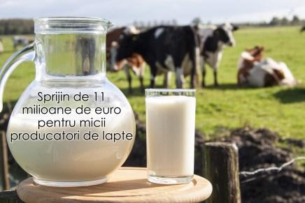 Sprijin de 11 milioane de euro pentru micii producatori de lapte