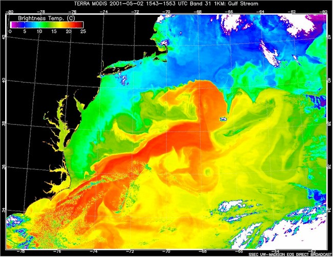 The Gulf Stream in False Colors.  Red up to 25.0 C Blue less than 10.0 C