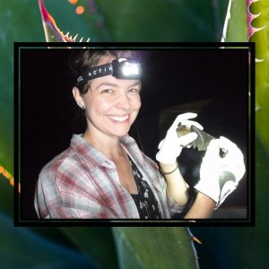A smiling woman wears a lit headlamp, a plaid shirt, and white gloves while she holds a golden-brown bat with an outstretched wing. The image is overlaid over a background of a plant with dark green, vertically-orientated leaves with yellow, serrated edges.