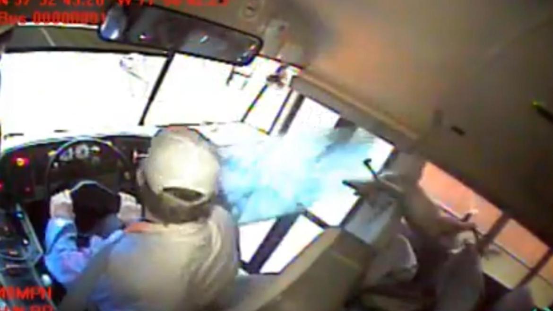 Un venado se estrella contra un autobús escolar y cae sobre estudiante