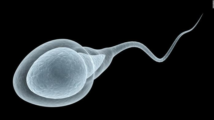 Espermatozoides, afectados por inhalar humo de incendios