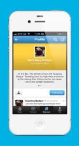 Hellocomputer - BG Twitter Profile - small