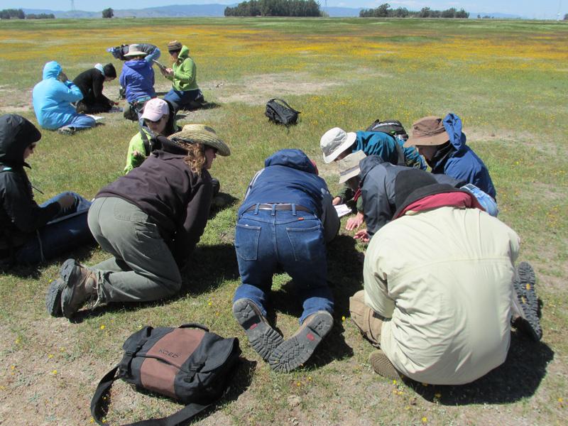 Vegetation workshop