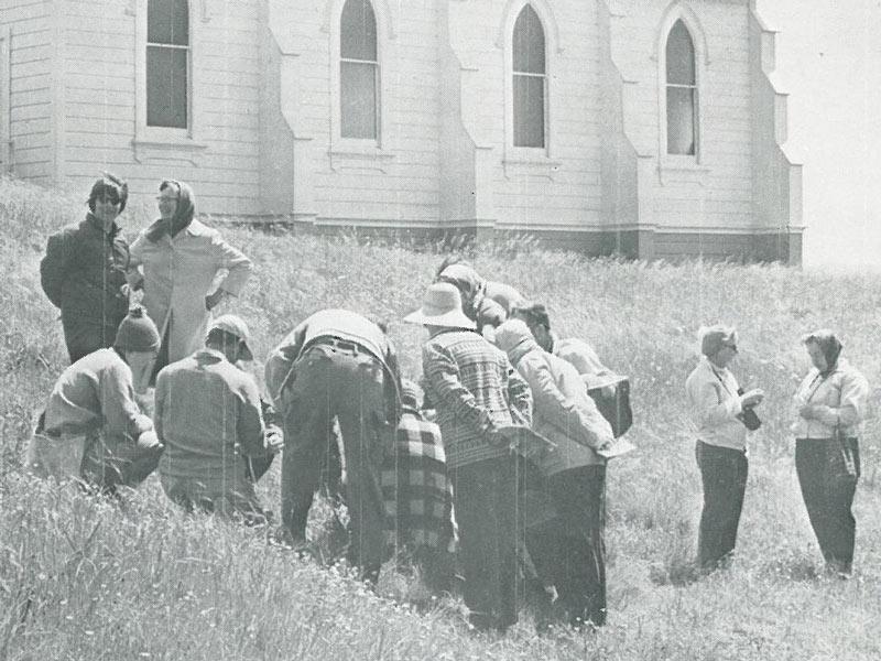CNPS Marin chapter, 1971.