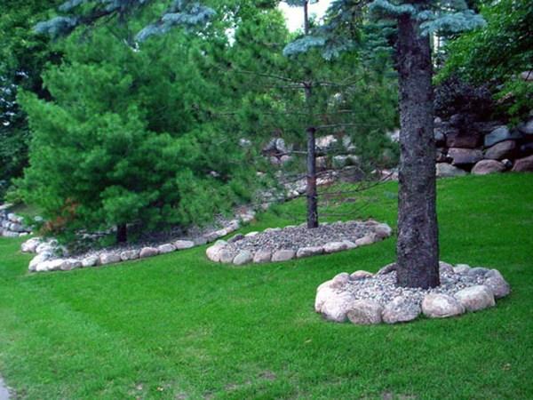 cn' lawn ' landscape