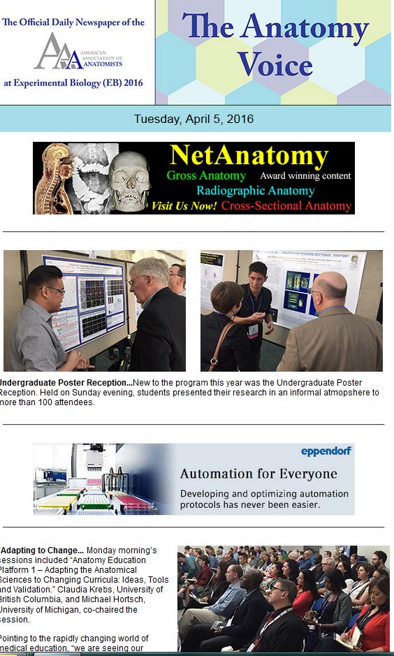 Amazing Michigan Anatomy Website Motif - Human Anatomy Images ...
