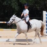 Full stable of dressage riders on display at competition