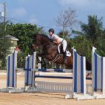 Cayman mounts show jumping contest