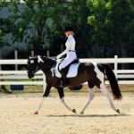Riders finish strong at season's last dressage