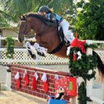 Equestrians celebrate Christmas early