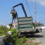 RCIPS and DEH help clean up Watler's Road
