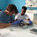 CCMI internships for budding ocean scientists