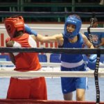 Barnes wins boxing gold in Guyana