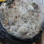DoE recycles over 300lbs of fishing line
