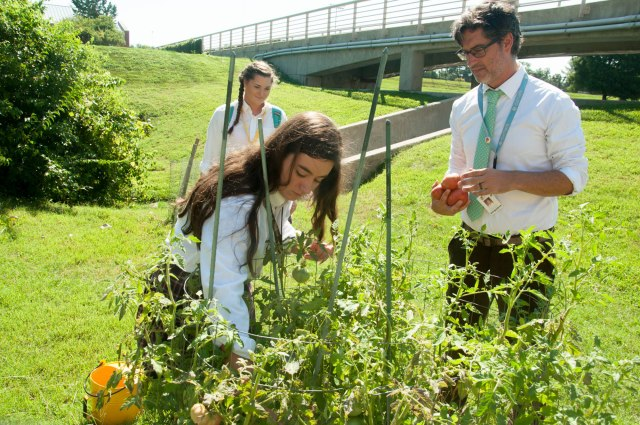 Brent Fernandez, who teaches Catholic social teaching at Father Ryan High School in Nashville, Tenn., tends the school garden with some of his students. (CNS/Theresa Laurence, Tennessee Register)