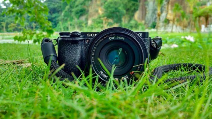 camera-field-grass