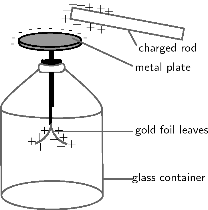 draw a neat diagram of electroscope Science Some Natural