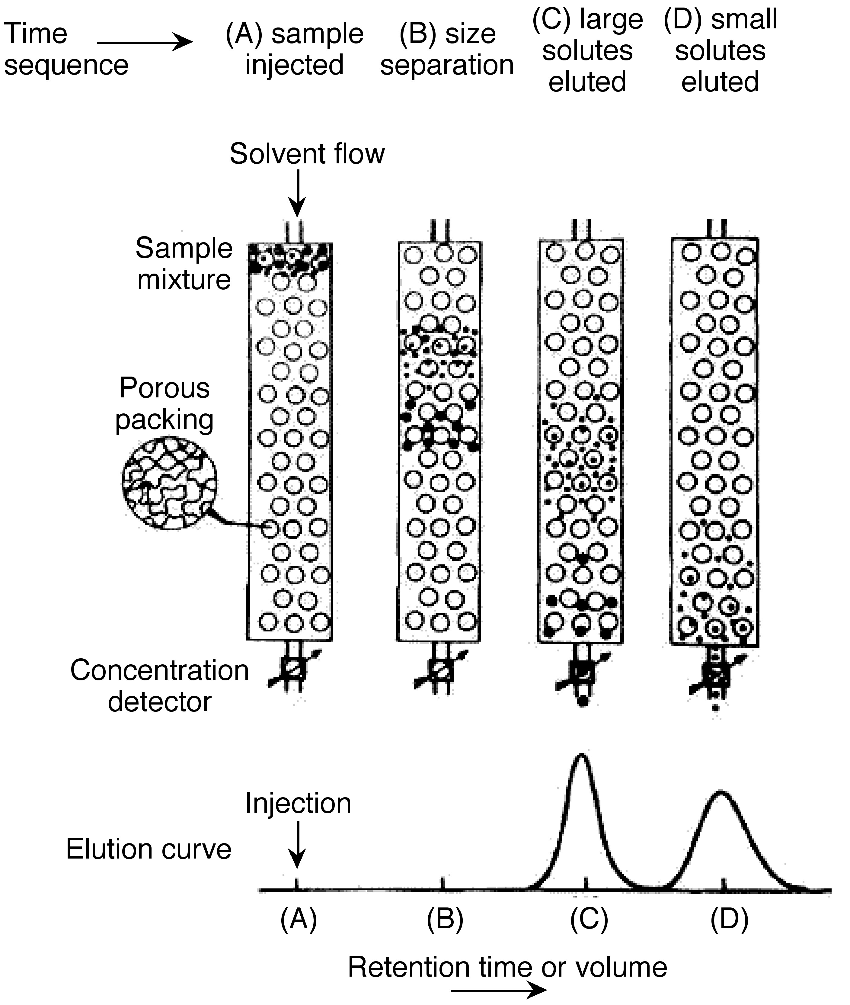 Size Exclusion Chromatography and its Application in