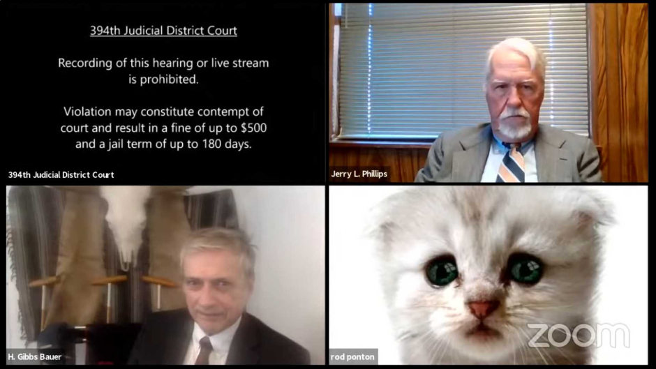 WATCH:VIDEO: 'I'm not a cat,' lawyer in awkward Zoom filter tells judge during virtual court hearing