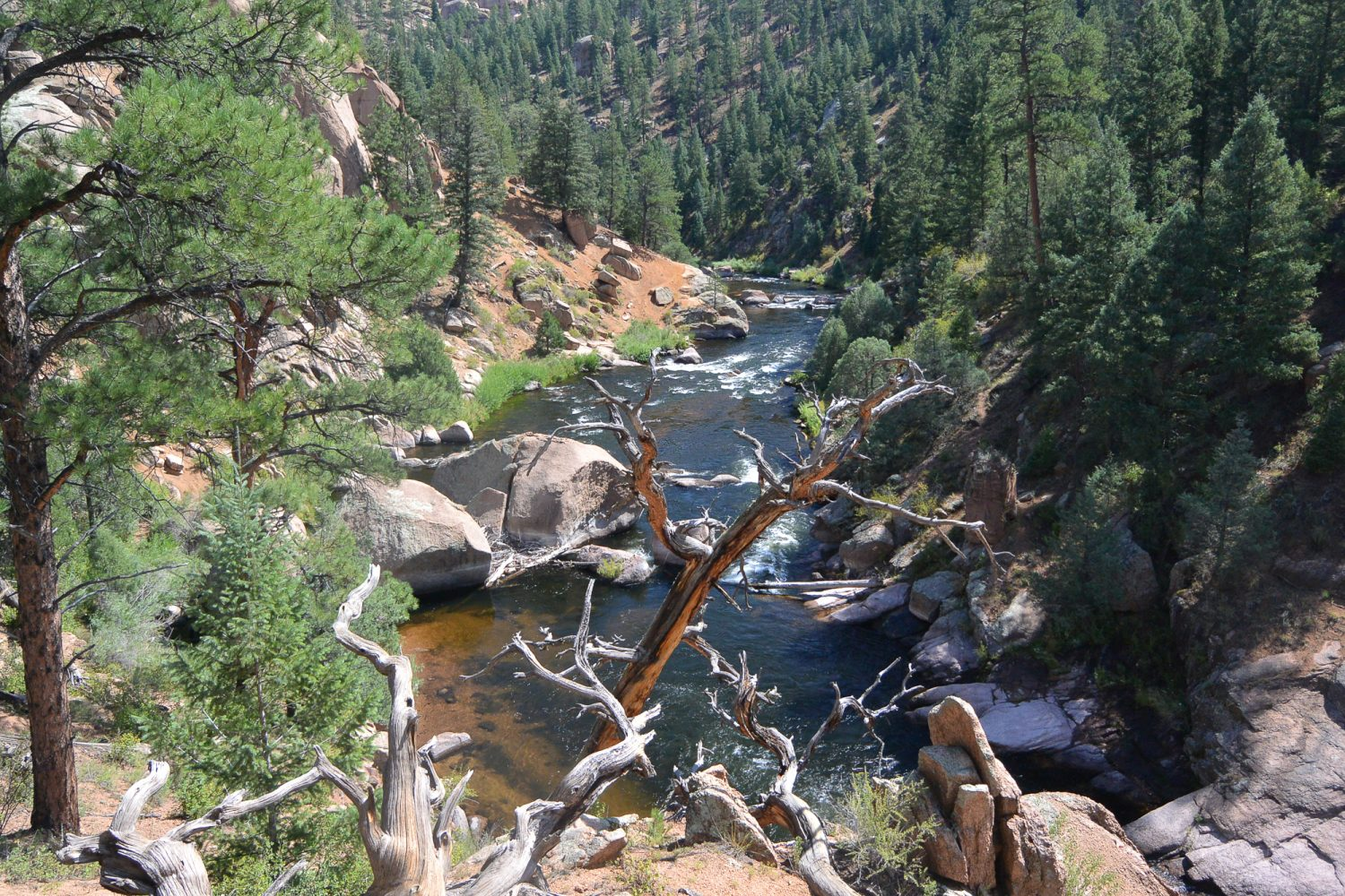 Upper South Platte River Photo